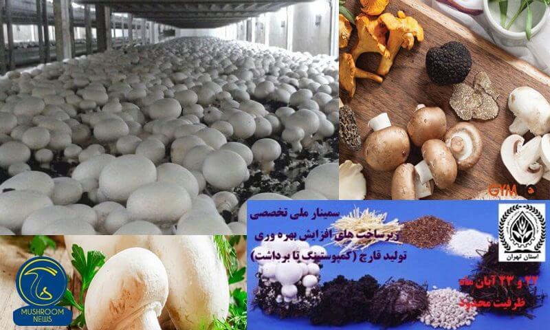 سمینار ملی تخصصی زیرساختهای افزایش بهرهوری تولید قارچ