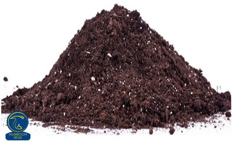 خاک پوششی در پرورش قارچ, هاگ