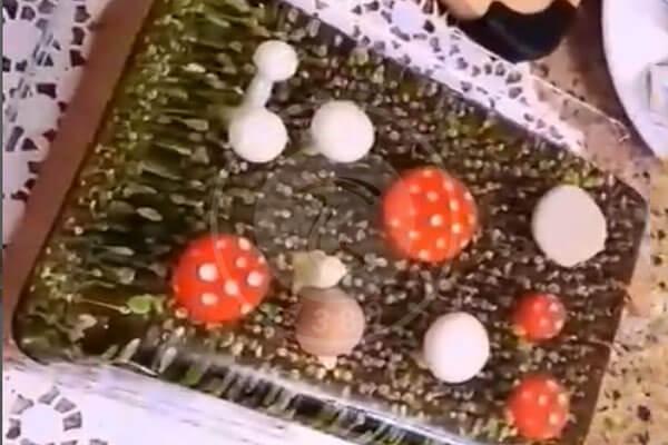 ژله سه بعدی با طرح قارچ, هاگ