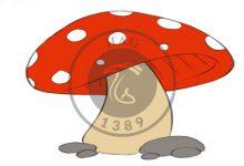 تصویر از قصه قارچ کوچولو