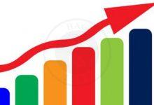 افزایش قیمت قارچ فله و ثبت رکورد بی سابقه, هاگ
