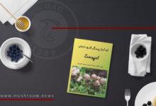 کتاب خودآموز پرورش قارچ دکمهای: کمپوست, هاگ
