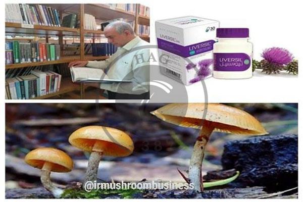 ساخت داروی درمان مسمومیت ناشی از قارچ سمی با گیاه خارمریم, هاگ