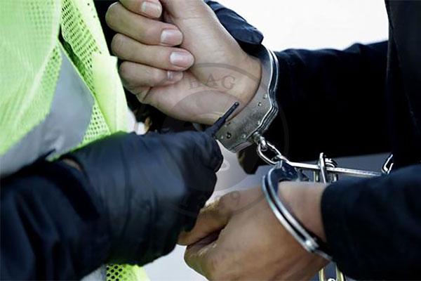 جولان قارچ توهمزا درمیان معتادان کرمان/دکتر ماشروم دستگیر شد, هاگ