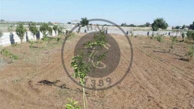 اماو اگر های تخریب زمینهای روستای علیآباد توسط جهاد کشاورزی پاکدشت, هاگ
